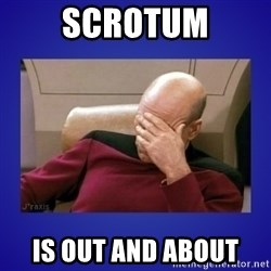 Picard facepalm  - scrotum is out and about