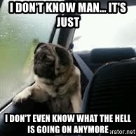introspective pug - i don't know man... it's just i don't even know what the hell is going on anymore