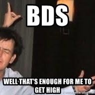 Drunk Charlie Sheen - BDS  WELL THAT'S ENOUGH FOR ME TO GET HIGH