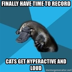 Podfic Platypus - Finally have time to record cats get hyperactive and loud