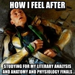 loki down - how I feel after studying for my literary analysis and anatomy and physiology finals