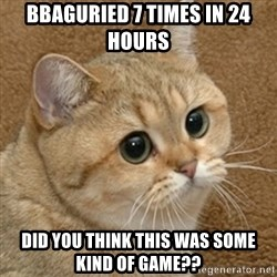 motherfucking game cat - BBAGURIED 7 TIMES IN 24 HOURS DID YOU THINK THIS WAS SOME KIND OF GAME??
