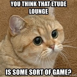 motherfucking game cat - YOU THINK THAT ETUDE LOUNGE IS SOME SORT OF GAME?