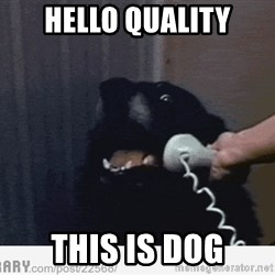 Hello This is Dog - hello quality this is dog