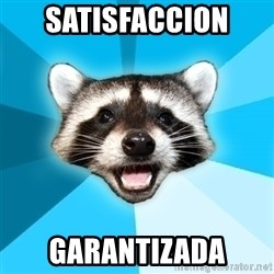 Lame Pun Coon - satisfaccion  garantizada