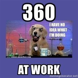 I don't know what i'm doing! dog - 360 at work