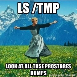 Look at all the things - LS /tmp Look at all thse prostgres dumps