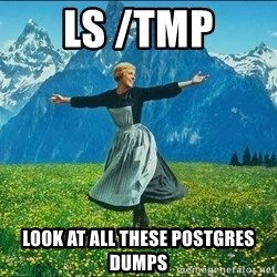 Look at all the things - ls /tmp look at all these postgres dumps