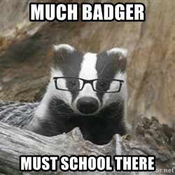Nerdy Badger - Much Badger Must School There
