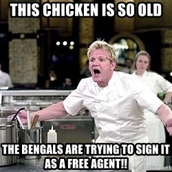 chef ramsay chuck norris - this chicken is so old the bengals are trying to sign it as a free agent!!