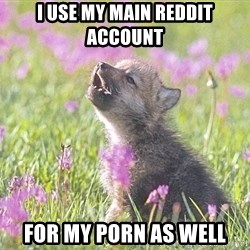 Baby Insanity Wolf - i use my main reddit account for my porn as well