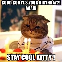 Birthday Cat - Good god it's your Birthday?! Again Stay cool kitty !