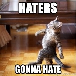 haters gonna hate cat - Haters Gonna hate