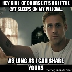 ryan gosling hey girl - Hey Girl, of course it's ok if the cat sleeps on my pillow... as long as I can share yours