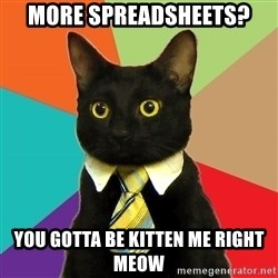 Business Cat - more spreadsheets? you gotta be kitten me right meow