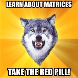 Courage Wolf - Learn about matrices take the red pill!