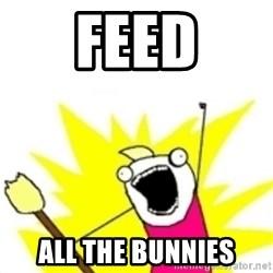 x all the y - FEED all the bunnies