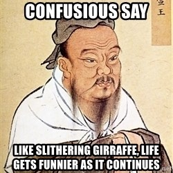Confucious - Confusious say Like slithering girraffe, life gets funnier as it continues