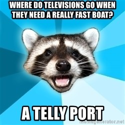 Lame Pun Coon - where do televisions go when they need a really fast boat? a telly port