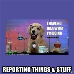 I don't know what i'm doing! dog -  reporting things & stuff