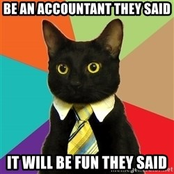 Business Cat - Be an accountant they said It will be fun they said