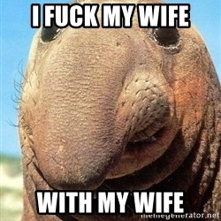 Lolwut - I FUCK MY WIFE WITH MY wife