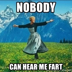 Look at all the things - nobody  can hear me fart