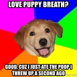 Advice Dog - love puppy breath? good, cuz i just ate the poop i threw up a second ago