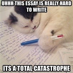 i shouldn t have procrastinated now it s a catastrophe homework hard cat uhhh this essay is really hard to write its a total catastrophe