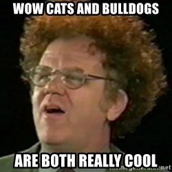 Steve Brule - wow cats and bulldogs are both really cool