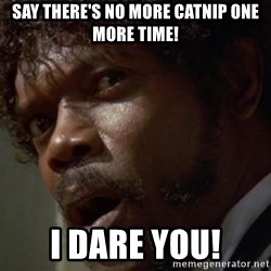 Angry Samuel L Jackson - Say there's no more catnip one more time! I dare you!
