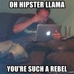 Meme Dad - Oh Hipster LLama You're such a rebel