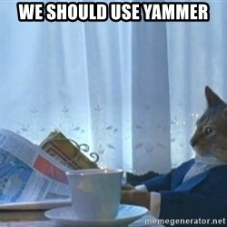 Sophisticated Cat - we should use yammer