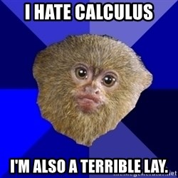 MRA Marmoset - I HATE Calculus I'm also a Terrible lay.