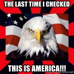 Bald Eagle - THE LAST TIME I CHECKED THIS IS AMERICA!!!
