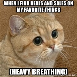 motherfucking game cat - When I find deals and sales on my favorite things (HEAVY BREATHING)