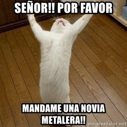 praise the lord cat - Señor!! POr favor Mandame Una Novia Metalera!!