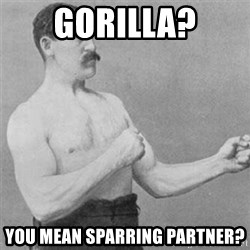 overly manlyman - gorilla? you mean sparring partner?