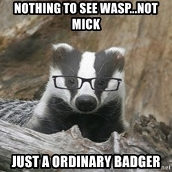 Nerdy Badger - nothing to see wasp...not mick just a ordinary badger