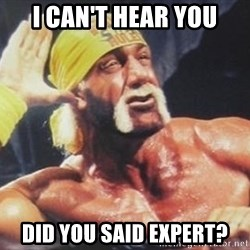 Hulk Hogan can't hear you - i can't hear you did you said expert?