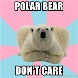 Perfection Polar Bear - PoLAR BEAR DON'T CARE