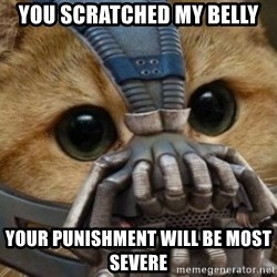 bane cat - You Scratched my belly Your punishment will be most severe