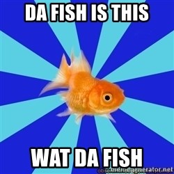 Absentminded Goldfish - da fish is this wat da fish