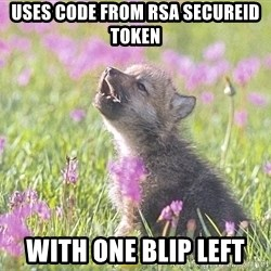Baby Insanity Wolf - Uses code from RSA SecureId tOKEN WITH ONE BLIP LEFT