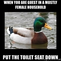 advice mallard - When you are guest in a mostly female household put the toilet seat down