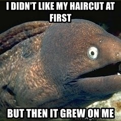 Bad Joke Eel v2.0 - I didn't like my haircut at first But then it grew on me