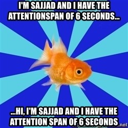 Absentminded Goldfish - I'm sajjad and I have the attentionspan of 6 seconds... ...Hi, I'm sajjad and I have the attention span of 6 seconds