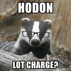 Nerdy Badger - HODON LOT CHARGE?