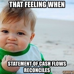 Victory Baby - that feeling when statement of cash flows reconciles