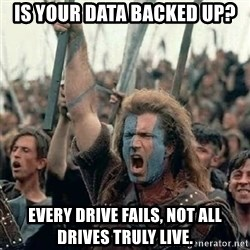 Brave Heart Freedom - is your data backed up? Every drive fails, not all drives truly live.